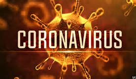 Erie County Corona Virus Information